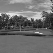 Augusta National 8