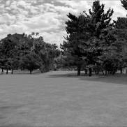 Wagga Wagga Country Club 7